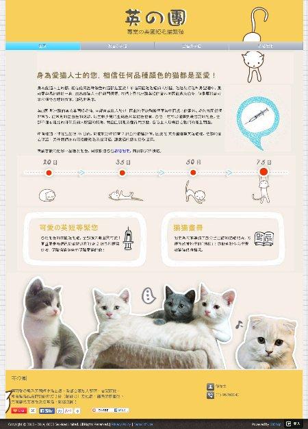 極可愛の澳系英國短毛猫出讓,全部自家私人繁殖,骨架粗壯。  所有猫猫包在寵物診所打 2 針(附針咭)及杜蟲,確保健康衛生。  另有蘇格蘭短毛及摺耳猫,歡迎查詢!